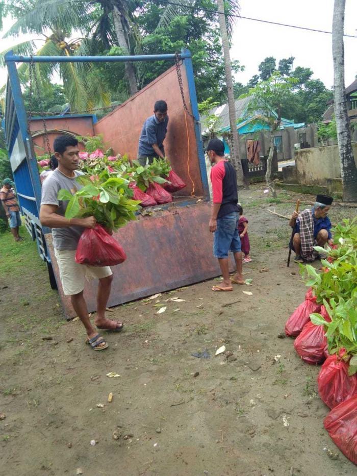 Petani hutan semangat membantu menurunkan bibit yang baru datang (sumber foto: haji jumaring)