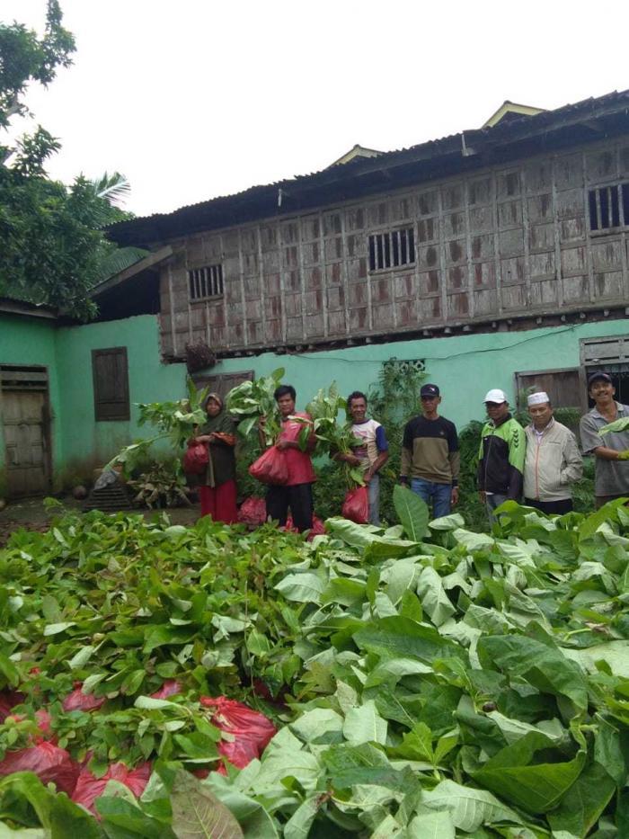 Ketua & sekretaris Hipki bersama kelompok tani hutan Tanah Harapan kelurahan Tana Beru Bonto Bahari (sumber foto: Haji Jumaring)